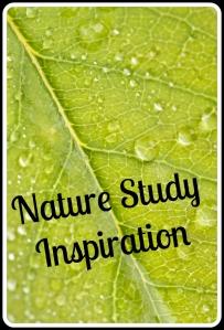 nature study inspiration