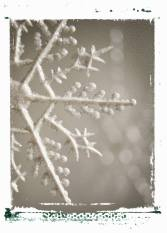 snowflake 2 unit study