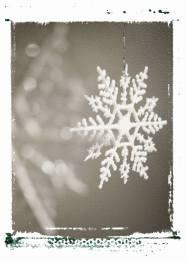 snowflake unit study