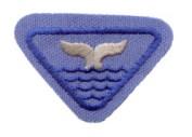 whale award