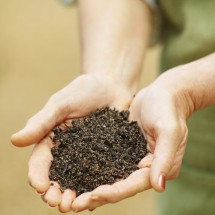 Close-up mid section of woman holding soil